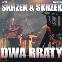 Dwa Braty (2008)